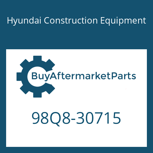 Hyundai Construction Equipment 98Q8-30715 - DECAL-SERVICE INSTRUCTION