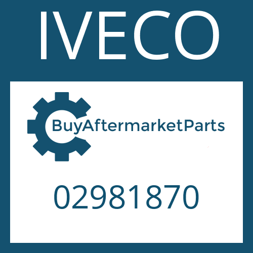 IVECO 02981870 - WASHER