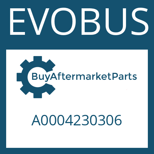 EVOBUS A0004230306 - BRAKE CARRIER